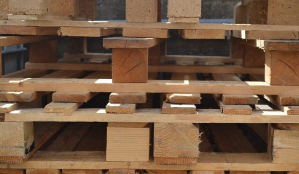 raccolta legno